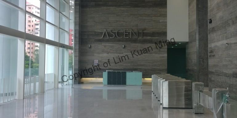 The Ascent - Main Lobby 2
