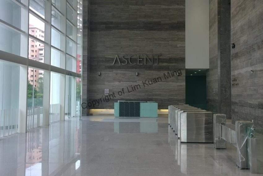 The Ascent - Main Lobby 2